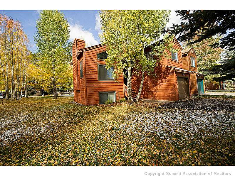 silverthorne mature singles Residential property for sale in silverthorne,co (mls #s1008201) learn more from resort real estate experts soaring ceilings & cherry kitchen.