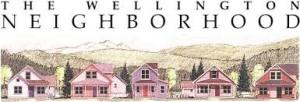 Wellington Homes in Breckenridge Colorado