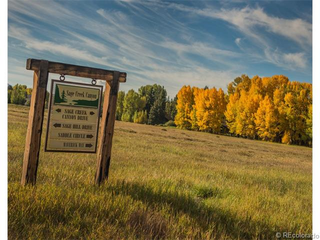 Silverthorne homes for sale